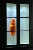 Kleid im Speicherfenster Stockfotografie
