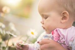 Klein babymeisje die een madeliefje in haar hand houden stock foto's