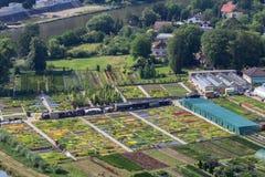 Klein bloemgebied van vooruitzicht Rivnac, de bloemistindustrie royalty-vrije stock foto's