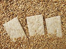 Klein brood (van brood) Stock Afbeelding
