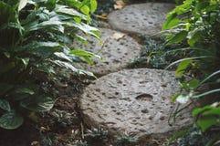Klein die Voetpad in tuin door ronde steen wordt gemaakt Stock Foto's