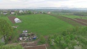 Klein dorp buiten stad De huisdieren weiden in weide, luchtmening stock footage