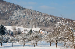 Klein dorp in een sneeuwbos Royalty-vrije Stock Foto