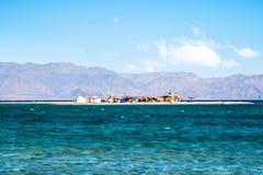 Klein eiland in Abu Galum Dahab royalty-vrije stock foto's