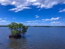 Klein eiland in het meer royalty-vrije stock afbeelding