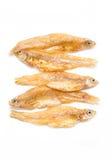 Klein Fried Fish. Royalty-vrije Stock Afbeeldingen