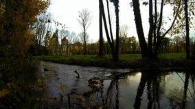 Klein kreek en kasteel op achtergrond stock videobeelden