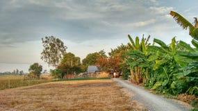 Klein Landbouwbedrijf in het Landelijke Omringen in Vietnam Stock Foto
