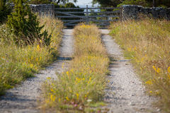 Klein landweg en kalksteen fence.GN Stock Fotografie