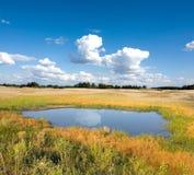 Klein meer in steppe stock foto's