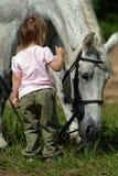 Klein meisje en groot grijs paard Royalty-vrije Stock Afbeeldingen