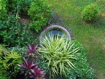 Klein park of kleine tuin stock afbeeldingen