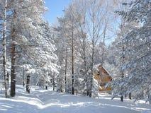 Klein plattelandshuisje in de sneeuw Stock Foto