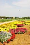 Klein plattelandshuisje in mooie bloemtuin met blauwe hemel Royalty-vrije Stock Afbeeldingen