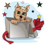 Klein puppy in een giftdoos Stock Foto's