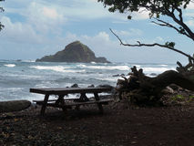 Klein rotsachtig eiland dichtbij kust Royalty-vrije Stock Afbeeldingen