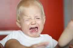 Klein, schreiend und Rasenkleinkind, das einen Temperamentwutanfall hat stockbilder