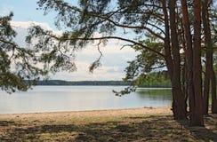 Klein strand op het meer in bospisochne-ozero Volyngebied ukraine Royalty-vrije Stock Afbeelding