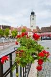 Klein vierkant in Sibiu, Roemenië Stock Afbeelding