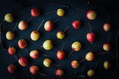 Kleine Äpfel mit den Zweigen auf dem dunklen Hintergrund Lizenzfreies Stockfoto