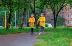 Kleine aanbiddelijke meisjes die op autopedden in de herfstpark in openlucht berijden Royalty-vrije Stock Afbeeldingen