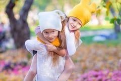 Kleine aanbiddelijke zusters bij warme zonnige de herfstdag Stock Foto