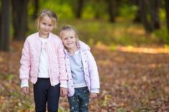 Kleine aanbiddelijke zusters bij warme zonnige de herfstdag Royalty-vrije Stock Foto