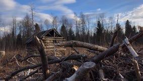 Kleine alte hölzerne Hütte im Wald-timelapse stock footage