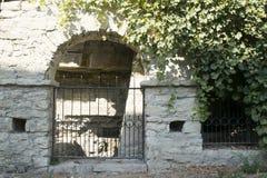 Kleine alte Tür des Steins mit Rebe um sie Stockbilder