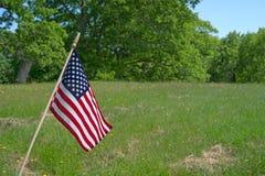 Kleine amerikanische Flagge in der Wiese Lizenzfreie Stockfotografie