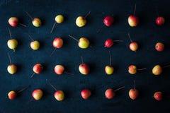 Kleine appelen op de donkere horizontale achtergrond Royalty-vrije Stock Afbeeldingen
