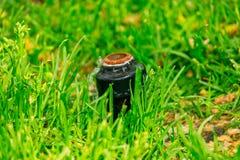 Kleine automatische de sproeier hoofdhuiden van het irrigatiesysteem in een gras royalty-vrije stock foto's