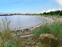 Kleine baai dichtbij Rockaway Oregon Royalty-vrije Stock Foto