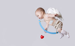 Kleine babycupido met engelenvleugels Stock Afbeelding