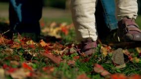 Kleine Babyfüße stampfen auf dem Herbstgelb und roten Blättern, die über das Gras zerstreut werden stock video
