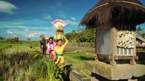 Kleine Balinese optocht die naar tempel tussen padievelden gaan stock videobeelden