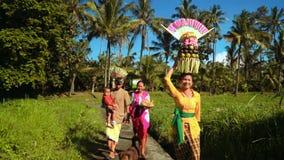 Kleine Balinese optocht met dienstenaanbod tussen padievelden stock videobeelden