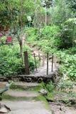 Kleine Bambusbrücke in der Landschaft Stockfoto