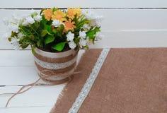 Kleine Baumtopfpflanze auf hölzernem Regal verzierte Innenraum mit weißer Wand Lizenzfreie Stockbilder