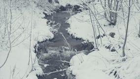 Kleine beek in de winter met dalende sneeuw Alles is behandeld met vers poeder stock footage
