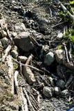 Kleine bergrivier royalty-vrije stock afbeelding
