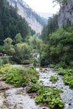 Kleine bergrivier die onder de steile hellingen van de Rhodope-Bergen stromen Royalty-vrije Stock Afbeeldingen