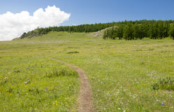Kleine Bergweg Royalty-vrije Stock Foto