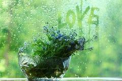 Kleine blaue wilde Blumen nähern sich nassem Fenster Stockfotografie