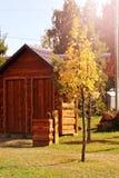 Kleine blokhuis en de herfstboom stock foto's