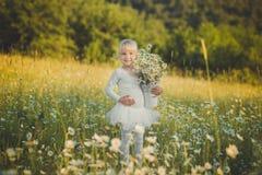 Kleine blonde Mädchenballerina im weißen Ballettkleid, das mit Eimerkorb der Blumengänseblümchenkamille auf Wiese des Waldes wild Stockfoto