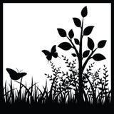 Kleine boom en vlinders Royalty-vrije Stock Fotografie