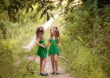 Kleine bosbewoners royalty-vrije stock foto's