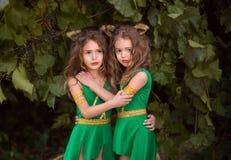 Kleine bosbewoners Royalty-vrije Stock Afbeeldingen