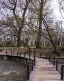 Kleine Brücke über Fluss im Wald im vajdahunyad Budapest lizenzfreies stockfoto